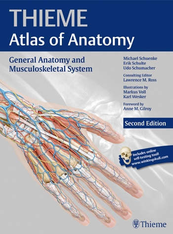 Anatomy | General Anatomy and Musculoskeletal System (THIEME Atlas ...