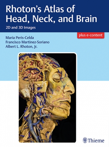 Anatomy Rhotons Atlas Of Head Neck And Brain