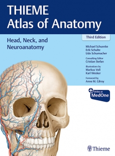 View Details for Head, Neck, and Neuroanatomy (THIEME Atlas of Anatomy)