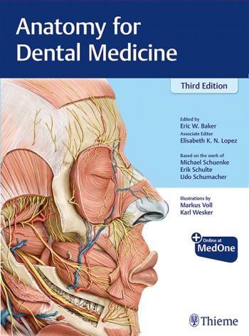 Anatomy for Dental Medicine, 3rd Edition - Original PDF