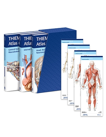 View Details for THIEME Atlas of Anatomy, Latin Nomenclature, Three Volume Set, Third Edition