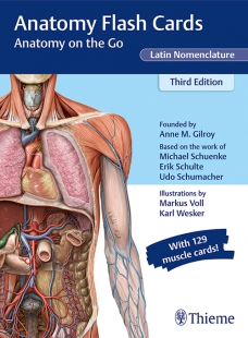 View Details for Anatomy Flash Cards, Latin Nomenclature