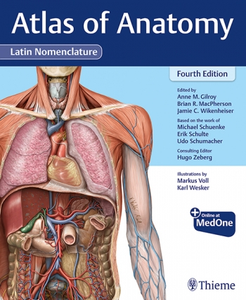 View Details for Atlas of Anatomy, Latin Nomenclature