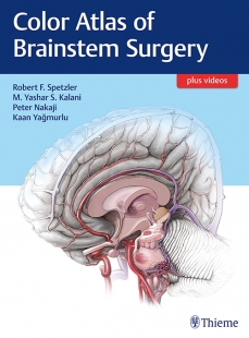View Details for Color Atlas of Brainstem Surgery
