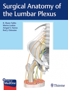 View Details for Surgical Anatomy of the Lumbar Plexus