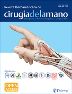 View Details for Ibero-American Journal of Hand Surgery